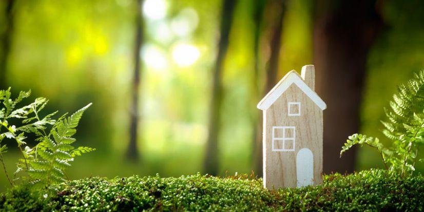 Casa ideale nel bosco